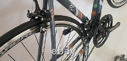 Fahrrad 700c 28 Fixed Bike Style Mit 21 Gang Shimano Limited Edition 2 Farben